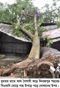 Dinajpur Tornado Pic-11 22