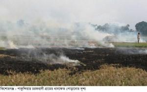 Kishoreganj (Paddy Field Burnt)-03-05-15