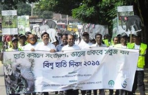world elephant day rally in Jhinaigati