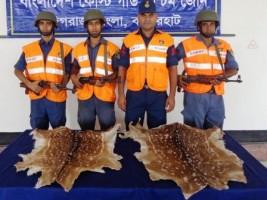 deer skin found in sundarbans