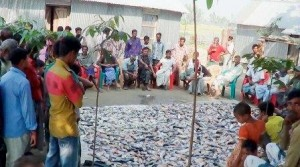 fish project destroyed by toxic tablet