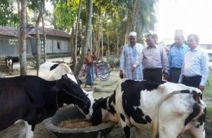sherpur-pic-2-milk-village