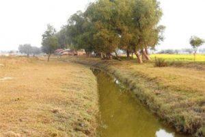 Satkhira Salta river